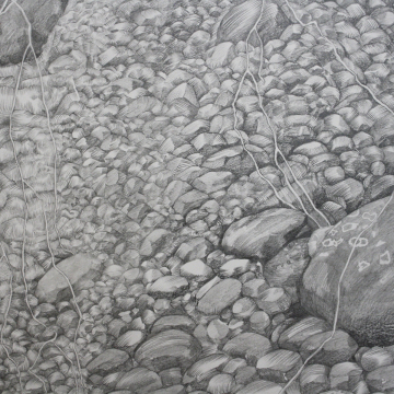 Degradable - A detail. Pencil. 1,5 x 9 metres. 2018