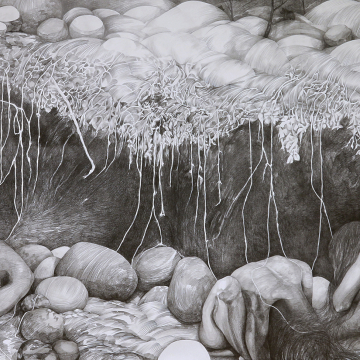 Degradable -A detail. Pencil. 1,5 x 9 metres. 2018